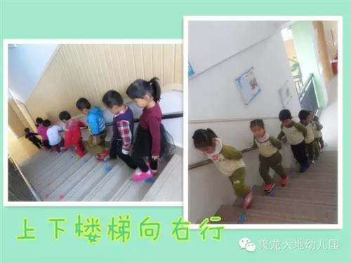 幼儿园国学家园共育栏布置图片